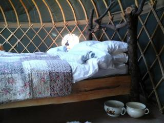 Nice 3 bedroom Yurt in Westcott - Westcott vacation rentals