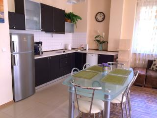 Apartament 100 m from Neptune Fountain - Gdansk vacation rentals