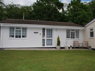 Comfortable Bungalow with Internet Access and Television - Saint Cleer vacation rentals