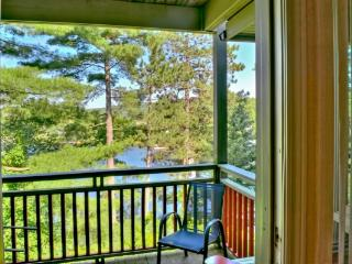 Perfect 1 bedroom House in Big Chute - Big Chute vacation rentals