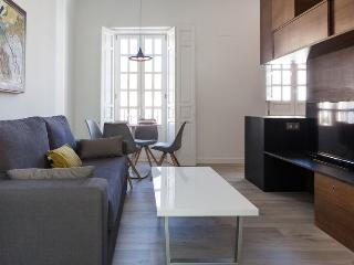APARTMENTSOLE-2-2 BRAND NEW APARTMENT IN THE CENTER - Seville vacation rentals