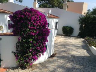Lovely Villa with Internet Access and Dishwasher - Vale do Lobo vacation rentals
