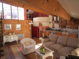 Sunny provencal duplex with terrace - Aix-en-Provence vacation rentals
