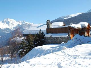 The last chalet in the Village, Meribel - Meribel vacation rentals