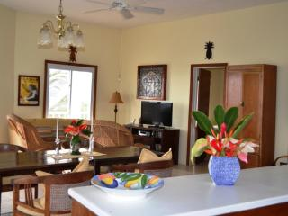 The Home Of Caribbean Sunsets - Nevis vacation rentals