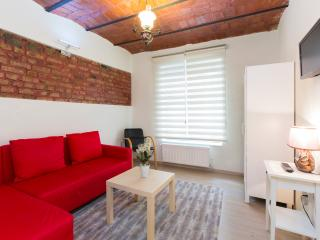 Historical flat at city center - Istanbul Province vacation rentals