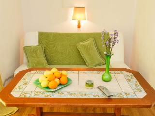 TH00724 Apartments Sandra / A5 One bedroom - Okrug Donji vacation rentals
