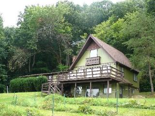 1 Little Vineyard by the River - Rileyville vacation rentals