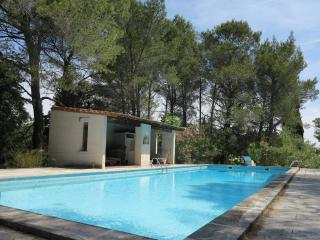 Big house in the natural park of Alpilles - Le Paradou vacation rentals