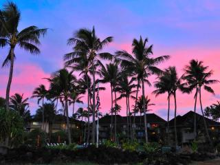 December special!! Beachfront, 2 br, 2 ba - Kapaa vacation rentals