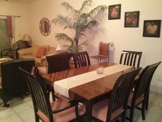 Nice Condo with Internet Access and A/C - San Carlos vacation rentals