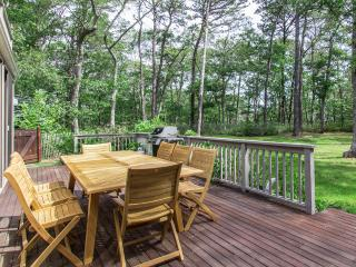 FRIEJ - Mink Meadows House,  Private Association Beach 10 Minute Walk or 3 Minute Drive from the House, Mink Meadows Golf Course just a 3 Minute Drive. - Vineyard Haven vacation rentals