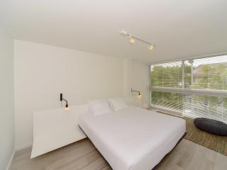 Modern 1 Bedroom Apartment in Key Biscayne - Coconut Grove vacation rentals