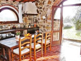 La Tinaia - beautiful 1 bedroom cottage & garden - Castellina In Chianti vacation rentals