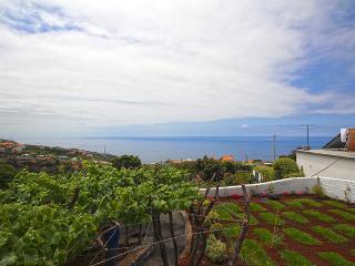 Villa Naturae - Calheta vacation rentals
