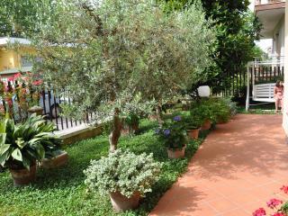 Divertimento, relax, benessere e tradizioni - Torre Pedrera vacation rentals
