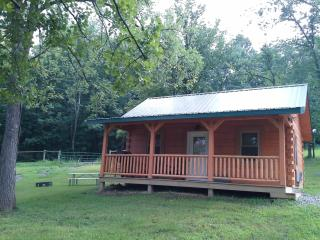 Perfect Cabin with A/C and Outdoor Dining Area - Frazeysburg vacation rentals