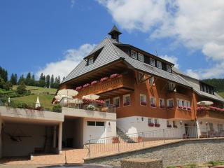 Pension Glöcklehof - Doppelzimmer mit Balkon - Todtnauberg vacation rentals