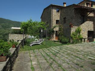 ULIVETO sleep among olive trees and visit Tuscany - Pistoia vacation rentals