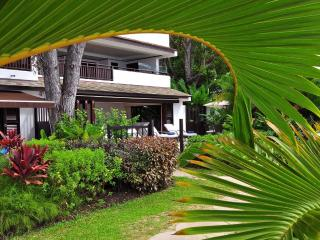 Charming 2 bedroom Condo in Saint James - Saint James vacation rentals