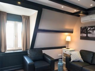 Short Stay Bezuidenhout 84b - The Hague vacation rentals