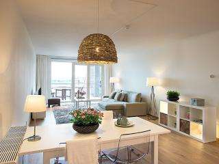 Comfortable 1 bedroom Apartment in The Hague - The Hague vacation rentals