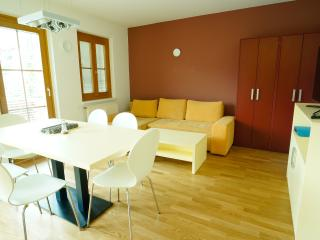 Bright 3 bedroom Tropolach Apartment with Internet Access - Tropolach vacation rentals