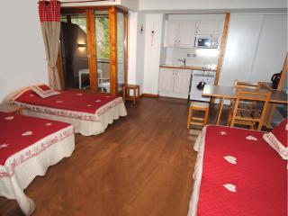 location studio brides les bains - wifi - parking - Brides-les-Bains vacation rentals