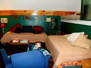 Bright 2 bedroom Millinocket Apartment with Deck - Millinocket vacation rentals