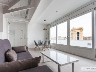 APARTMENTSOLE-BRAND NEW APARTMENT WITH TERRACE IN THE CENTER - Seville vacation rentals