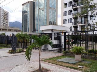 New apartment 100m olimpic Games - Rio de Janeiro vacation rentals