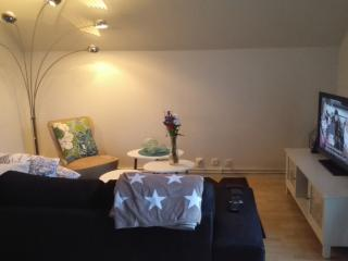 Romantic Apartment with Internet Access and Central Heating - Umeå  vacation rentals