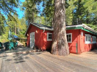 Unique property on 10+ acres, two miles from coast, pets ok! - Gualala vacation rentals