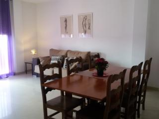 Nice House with Internet Access and Wireless Internet - Pineda de Mar vacation rentals