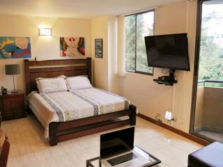 Beautiful Studio Apartment in El Poblado - Medellin vacation rentals