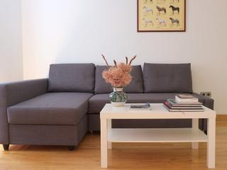 Cozy apartment in the old town - Pamplona vacation rentals