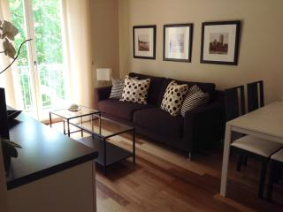 Brand New 1 bedroom apartment in the heart of Alba - Alba vacation rentals