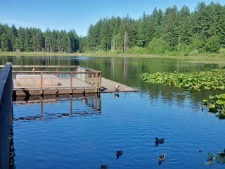 Relax Next To The Tranquil Greenbelt - Issaquah vacation rentals