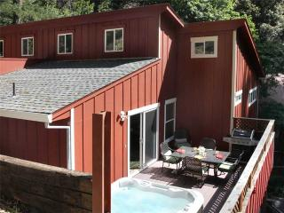 Comfortable House with Internet Access and Dishwasher - Guerneville vacation rentals