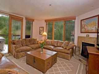 Nice Apartment with Internet Access and Dishwasher - Telluride vacation rentals