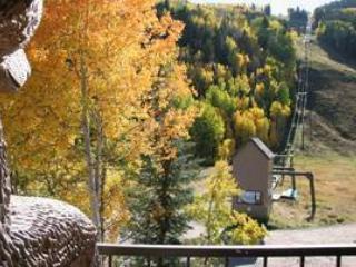 Cimarron Lodge 13 - Image 1 - Telluride - rentals