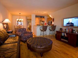 Cimarron Lodge 8 - Telluride vacation rentals