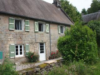 Beautiful old farmhouse in a charming village - Chaumeil vacation rentals