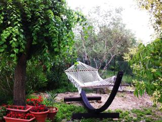 Cozy 1 bedroom Vacation Rental in Ancona - Ancona vacation rentals