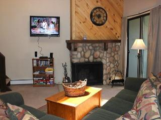 Super Condo w/Wifi, Clubhouse, Fireplace - Silverthorne vacation rentals