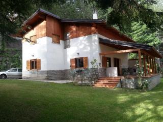 Villa nella Sila a Lorica sul lago Arvo. - Lorica vacation rentals