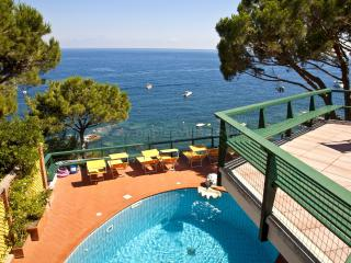 Luxurious 7 bedroom villa by the sea front on the Sorrento Coast - Marina del Cantone vacation rentals