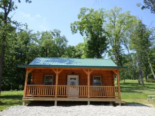 Nickel Valley Resorts Cabin 3 - Frazeysburg vacation rentals