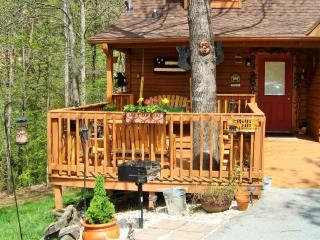 Spacious Cabin with Deck and Internet Access - Pigeon Forge vacation rentals