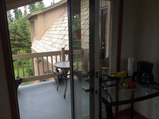 1 bedroom B&B with Internet Access in Kenai - Kenai vacation rentals
